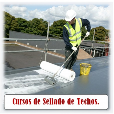 Seminario de sellado de techos en oferta con certificado incluido